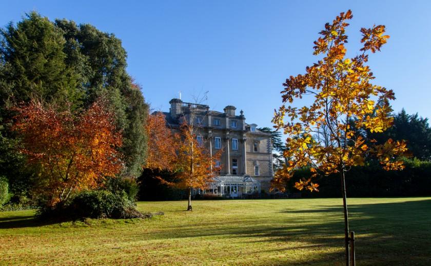 Amesbury Abbey Autumn Leaves